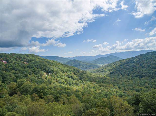 35 Winding Poplar Road #916, Black Mountain, NC 28711 (#3564274) :: Besecker Homes Team