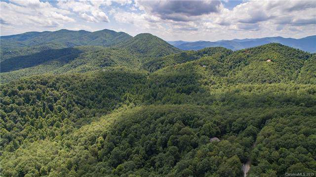 60 Burnt Ridge Trail, Black Mountain, NC 28711 (#3564372) :: www.debrasellscarolinas.com