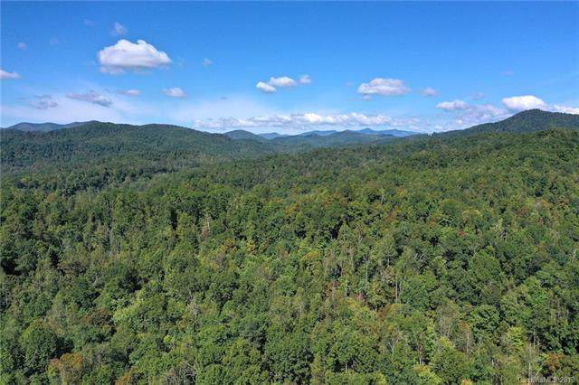 238 +/- Acres Old Fort Road - Photo 1