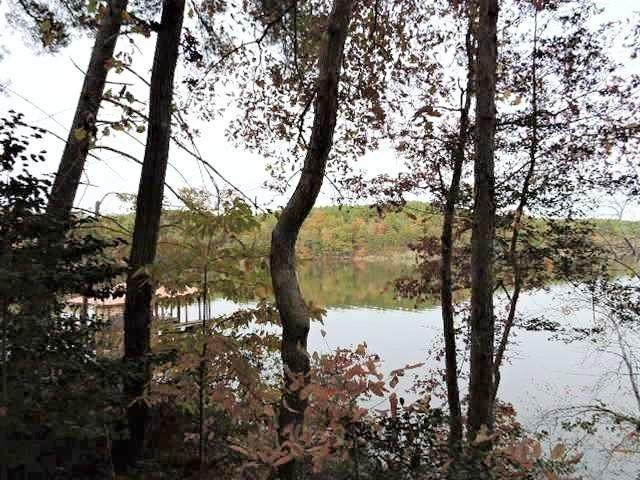 1219 Cleopatra Lane #286, Connelly Springs, NC 28612 (#3564499) :: Carlyle Properties