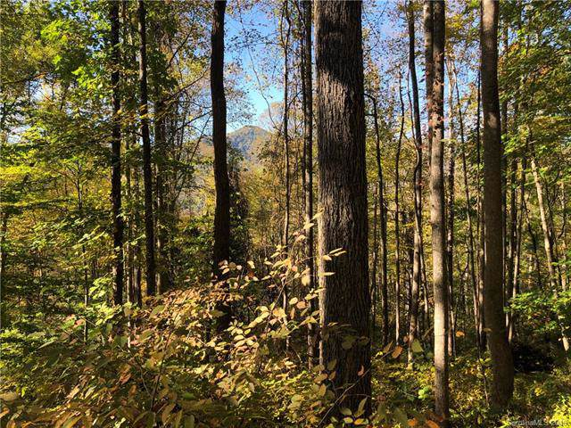 99999 Roberts Cove Road, Weaverville, NC 28787 (#3564973) :: MOVE Asheville Realty