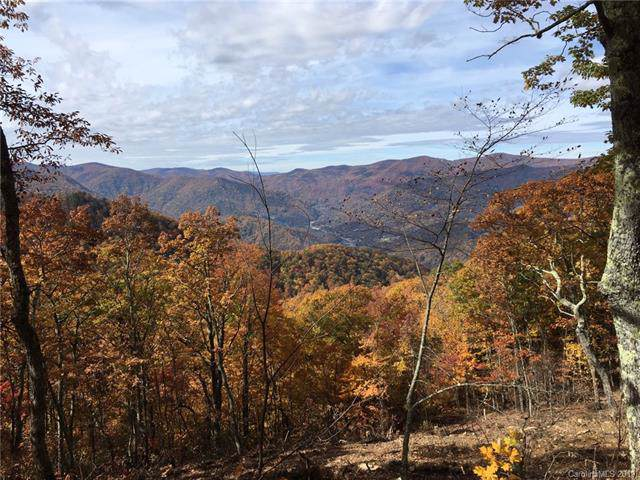 Lot G5 Ataya Trail #5, Maggie Valley, NC 28751 (#3565167) :: Carlyle Properties