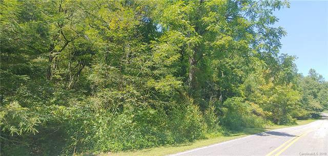 N/A Sutton Branch Road, Sylva, NC 28779 (#3565585) :: The Sarver Group