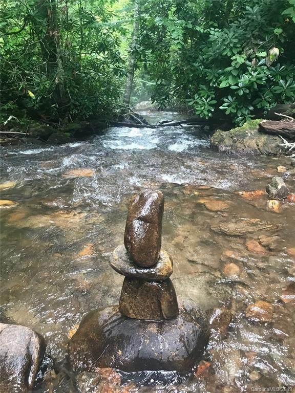 000 Moonshine Creek Trail - Photo 1