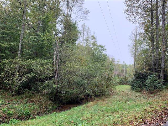 000 Shumont Road, Chimney Rock, NC 28720 (#3565784) :: LePage Johnson Realty Group, LLC
