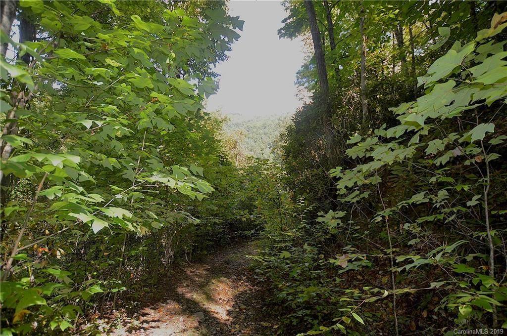1204 Dogwood Drive - Photo 1