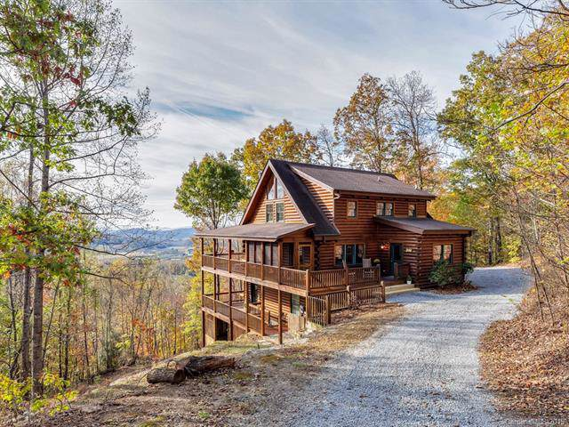 605 Boxwood Branch Lane, Hendersonville, NC 28792 (#3565942) :: Rowena Patton's All-Star Powerhouse