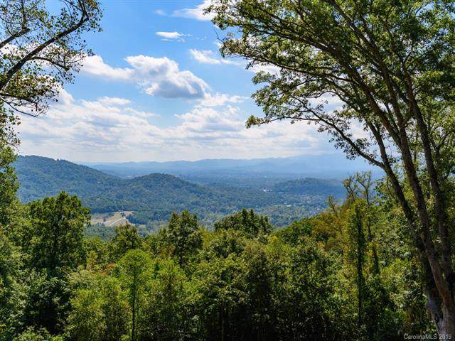 99999 Elk Mountain Scenic Highway #5, Asheville, NC 28804 (#3566053) :: Keller Williams Professionals