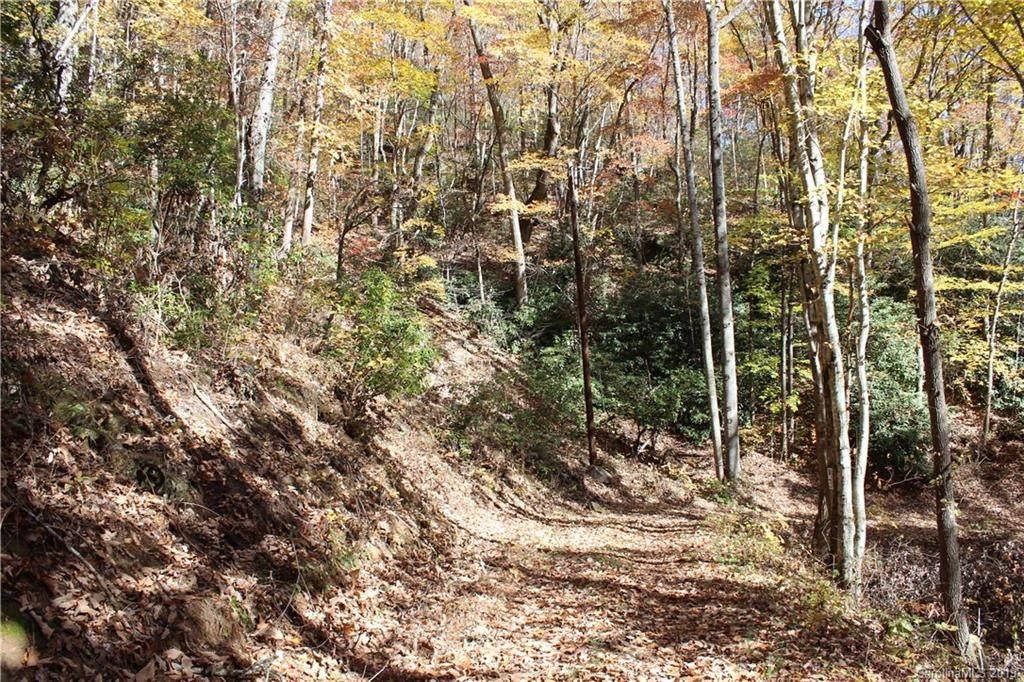 99999 Sequoia Trail - Photo 1