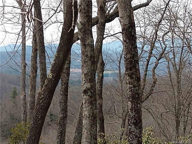 200 Ladys Fern Trail, Hendersonville, NC 28739 (#3566707) :: MartinGroup Properties