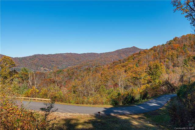 48 Longspur Lane #58, Asheville, NC 28804 (#3566760) :: Caulder Realty and Land Co.