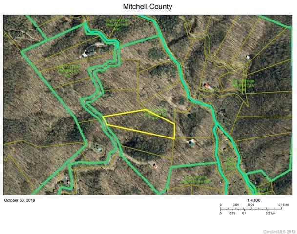 TBD Left Fork Run Road, Bakersville, NC 28715 (#3566858) :: Charlotte Home Experts