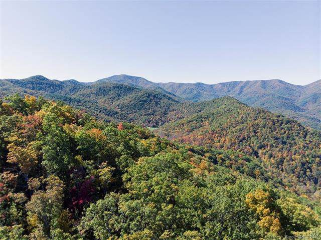 00 Burningtown Falls Road, Franklin, NC 28734 (#3566954) :: LePage Johnson Realty Group, LLC