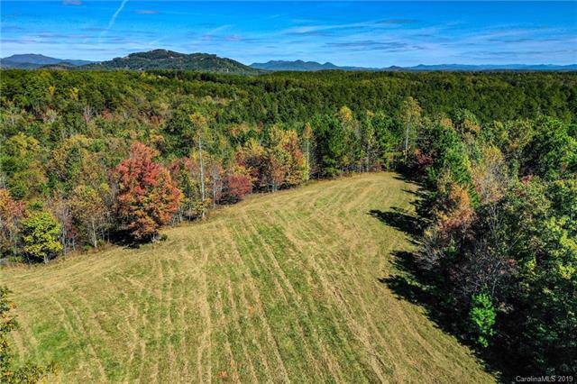 10.8 +/- Acres Coopers Trace, Mill Spring, NC 28722 (#3566962) :: Keller Williams South Park