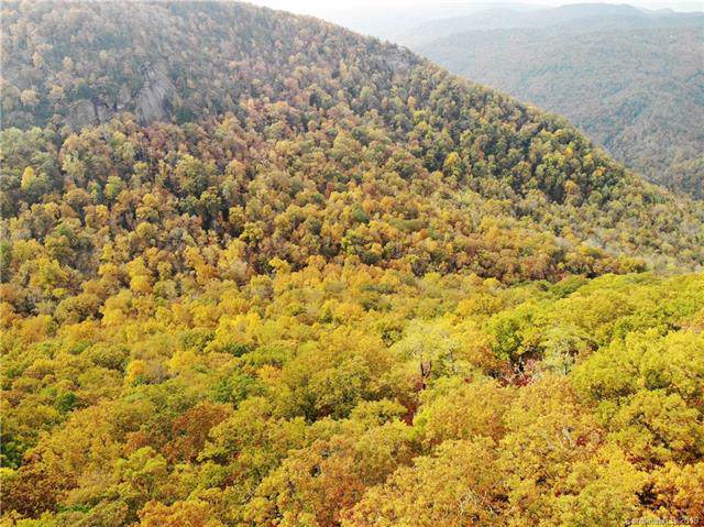 Tract 16 Kate Mountain Road, Black Mountain, NC 28711 (#3567004) :: MOVE Asheville Realty