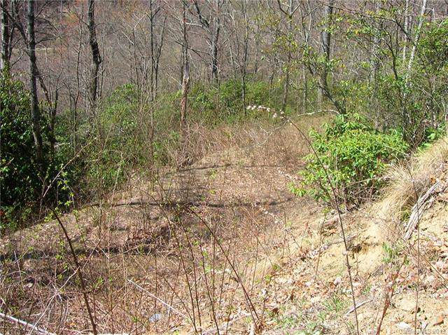 Lot 334 Paso Fino Drive, Maggie Valley, NC 28751 (#3567181) :: Carlyle Properties