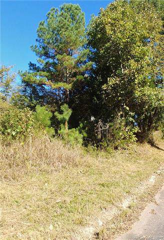 000 Murray Street, Chester, SC 29706 (#3567802) :: Mossy Oak Properties Land and Luxury