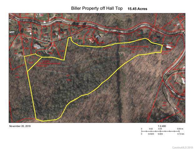 0000 Torda Trace, Waynesville, NC 28786 (#3569493) :: Carlyle Properties
