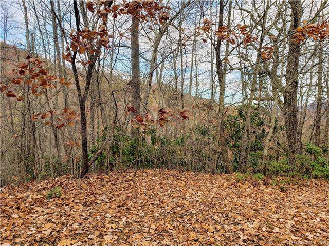 00 Autumn Drive #3, Waynesville, NC 28785 (#3569642) :: Francis Real Estate