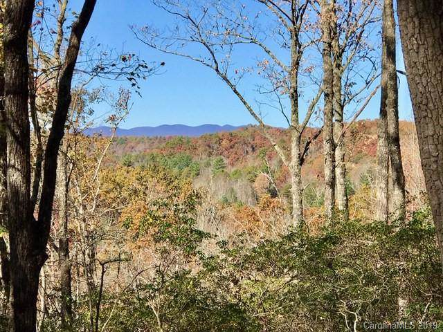 000 Big Hill Road #5, Brevard, NC 28712 (#3569746) :: Rinehart Realty