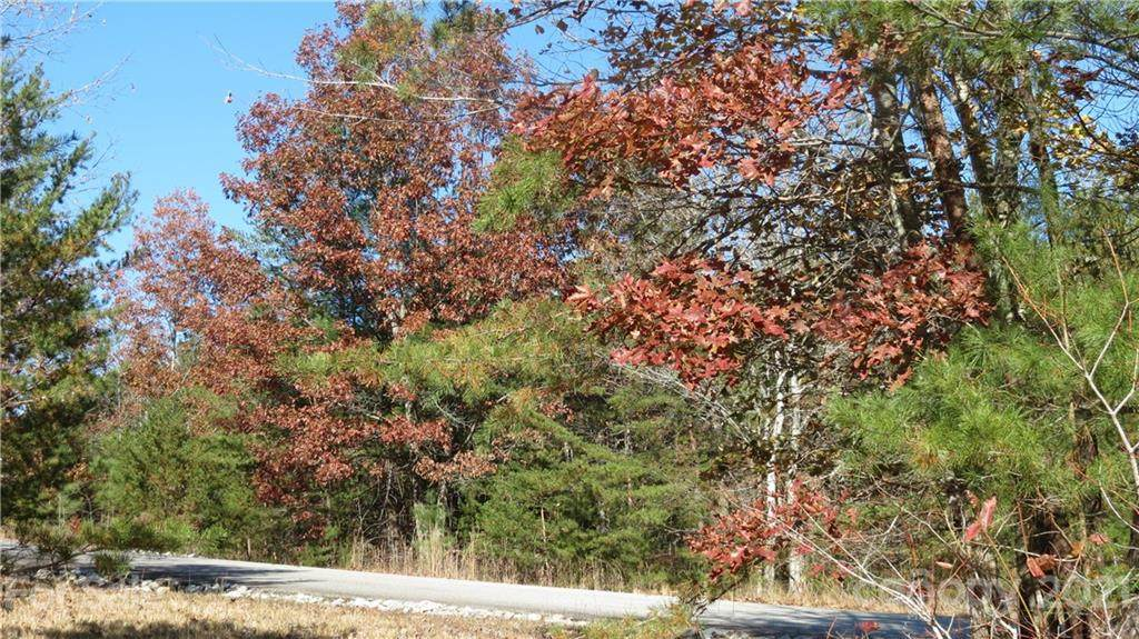 Lot 15-IV Double Eagle Drive, Nebo, NC 28761 (#3569800) :: BluAxis Realty