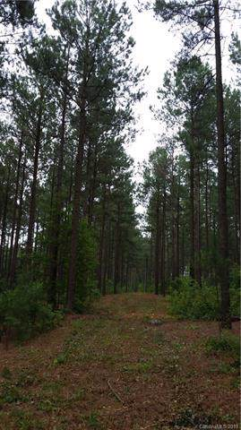 20 Ac Hidden Valley Road, Blythewood, SC 29016 (#3569833) :: Scarlett Property Group
