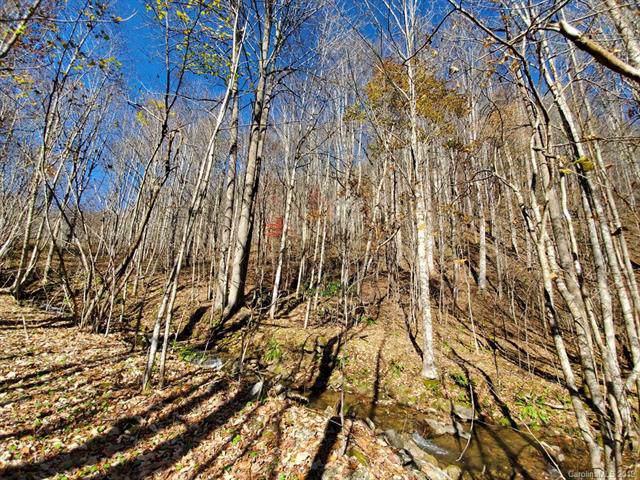 999 Scronce Creek Road - Photo 1
