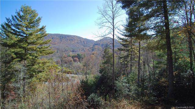 3.27 Acres off Autumn Trail Lane - Photo 1