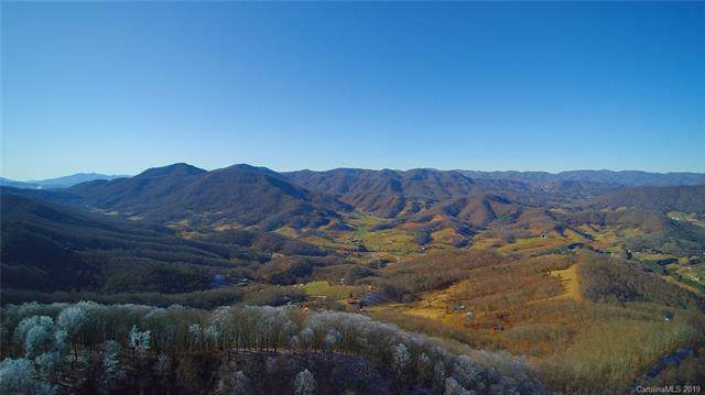 31.66 Acres OFF Cave Summit Trail 102-104, Leicester, NC 28748 (#3570043) :: Carver Pressley, REALTORS®