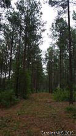 10 AC Hidden Valley Road, Blythewood, SC 29016 (#3570051) :: SearchCharlotte.com