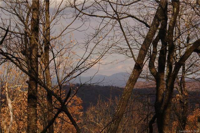 0000 Wild Magnolia Way, Zirconia, NC 28790 (#3570187) :: Carver Pressley, REALTORS®