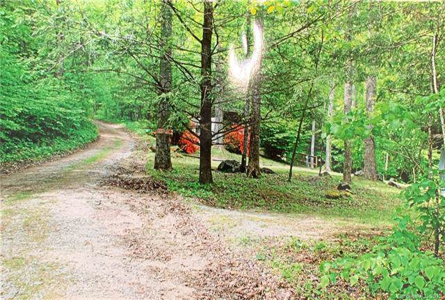 68 Mariner Lane, Hendersonville, NC 29073 (#3570445) :: Mossy Oak Properties Land and Luxury