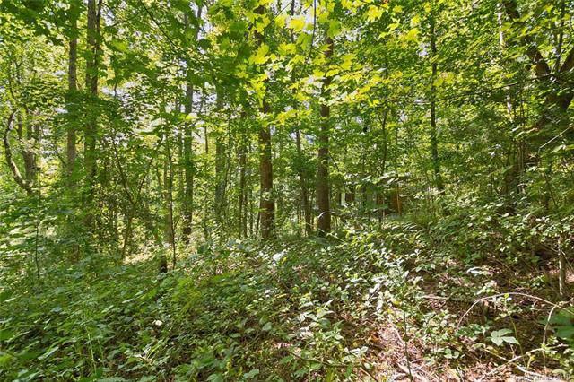 11 Toadshade Lane, Asheville, NC 28805 (#3570466) :: Francis Real Estate