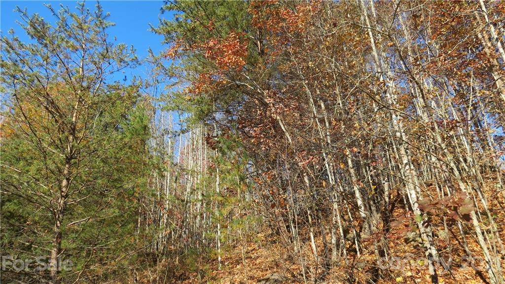 Lot 32 IVB Double Eagle Drive, Nebo, NC 28761 (#3570592) :: BluAxis Realty