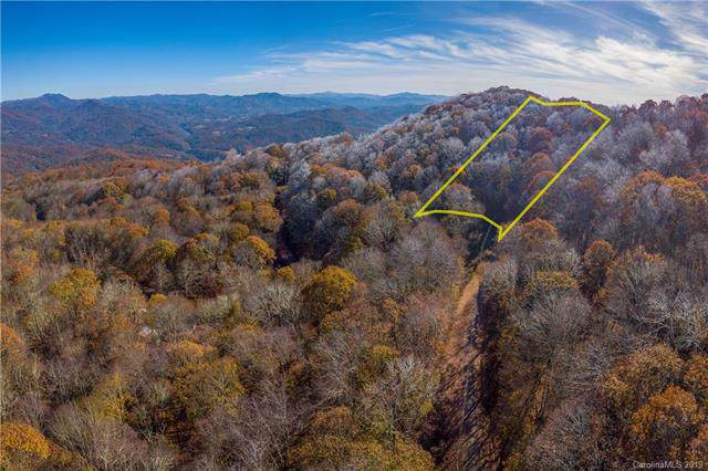 Lot 56 Teaberry Ridge Road, Waynesville, NC 28785 (#3571350) :: Odell Realty