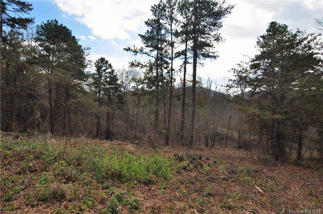 000 Dix Creek Chapel Road Tract 3, Asheville, NC 28806 (#3571530) :: IDEAL Realty