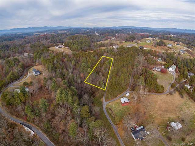 14 Al Faye Farm Way, Weaverville, NC 28787 (#3571732) :: Stephen Cooley Real Estate Group