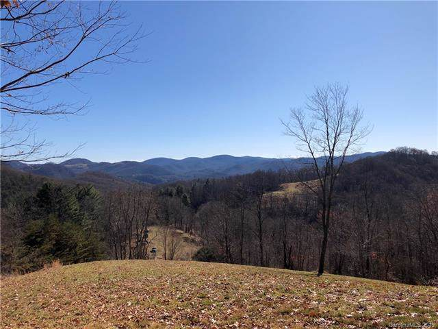 Tract A Canada Road, Tuckasegee, NC 28783 (#3571840) :: Stephen Cooley Real Estate Group