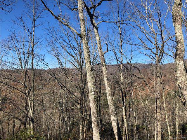 Tract C Canada Road, Tuckasegee, NC 28783 (#3571852) :: Stephen Cooley Real Estate Group