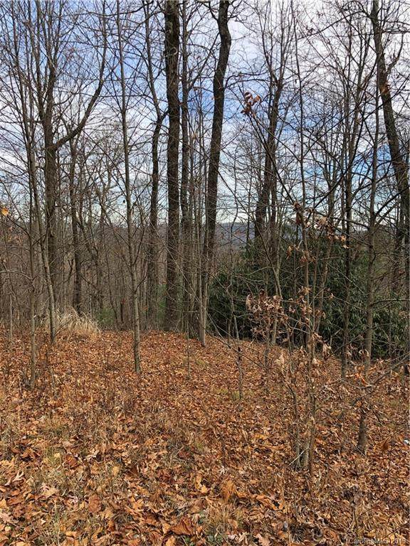 151 Wetherbee Lane, Rosman, NC 28772 (#3571955) :: LePage Johnson Realty Group, LLC