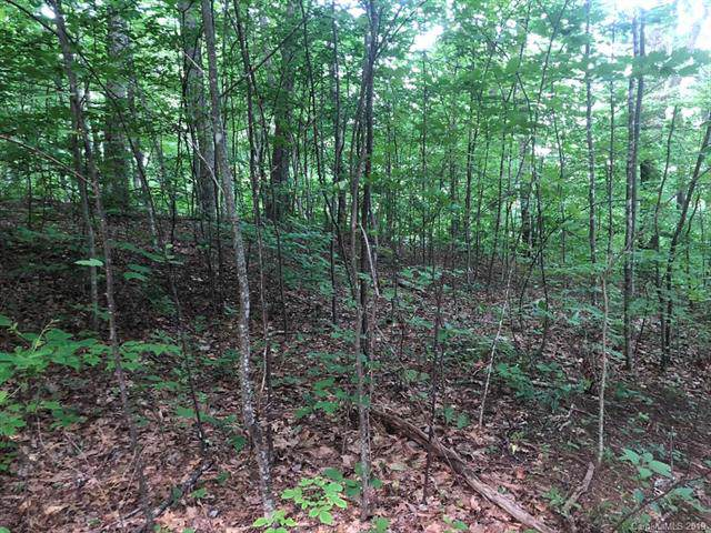 Lot 1 Off Walnut Creek Road, Waynesville, NC 28786 (#3572300) :: Keller Williams South Park