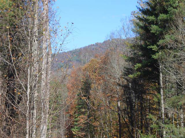 0 Carolina Keep Road #3, Green Mountain, NC 28740 (#3572719) :: Team Honeycutt