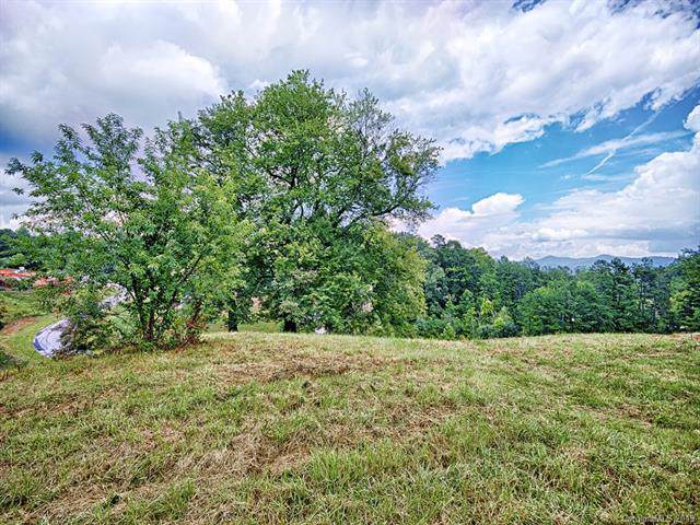 25 & 35 Magnolia Farms Drive 4 & 5, Asheville, NC 28806 (#3572769) :: IDEAL Realty