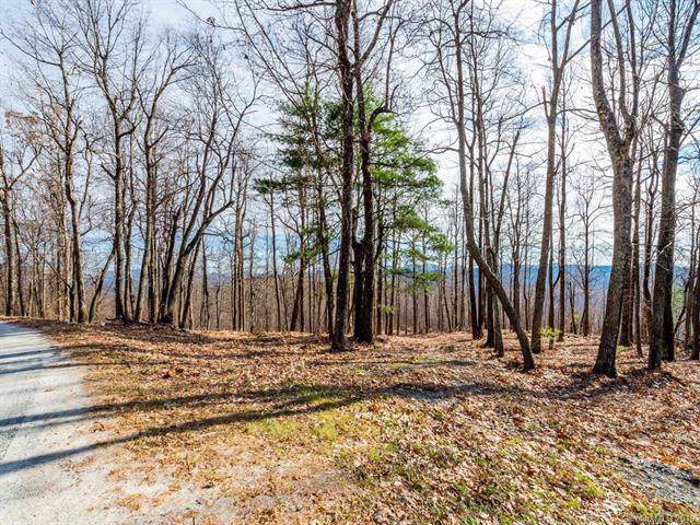 000 Pinnacle Mountain Road #2, Flat Rock, NC 28731 (#3572775) :: Carlyle Properties