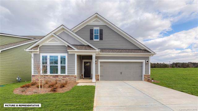 197 Hanks Bluff Drive, Mooresville, NC 28117 (#3572884) :: Stephen Cooley Real Estate Group