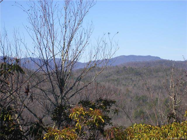 M18 Elk Mountain Trail M18, Brevard, NC 28712 (#3572895) :: Roby Realty