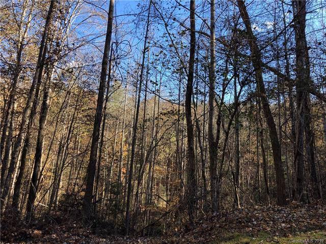 0 Back Hollow Drive Lot 11 Rev Ph 3, Lake Lure, NC 28746 (#3573103) :: Carolina Real Estate Experts