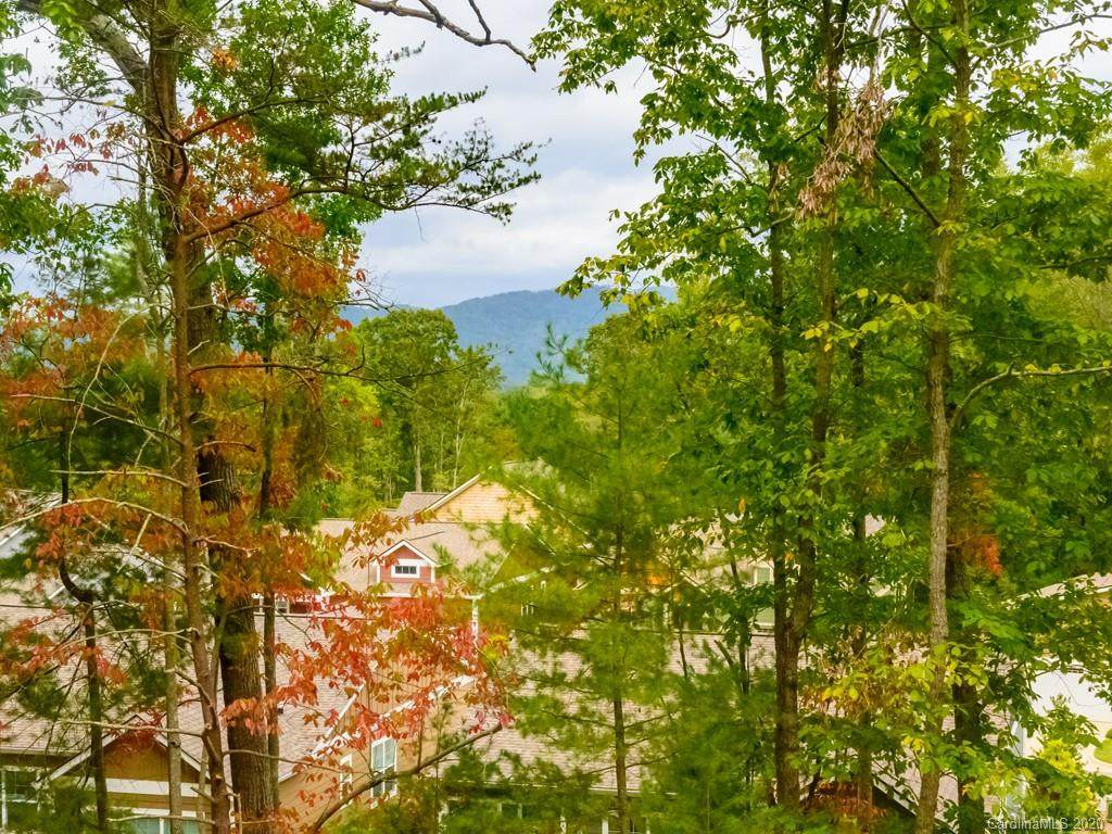 63 Lamar Avenue, Asheville, NC 28803 (#3573149) :: Puma & Associates Realty Inc.