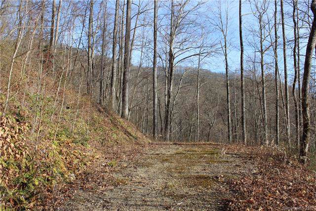 Lot #5 Rosewood Lane, Maggie Valley, NC 28751 (#3573493) :: Charlotte Home Experts