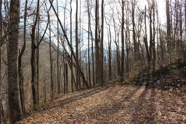 Lot #17 Covecrest Drive, Maggie Valley, NC 28751 (#3573514) :: Charlotte Home Experts